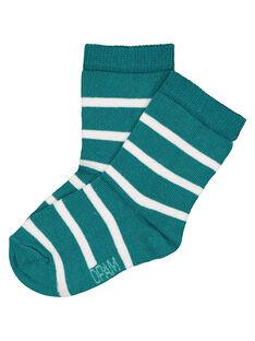 Green Socks GYUJOCHOR1 / 19WI1035SOQ608