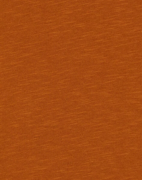 Light brown T-SHIRT KOECOTEE2 / 20W902H2TML804