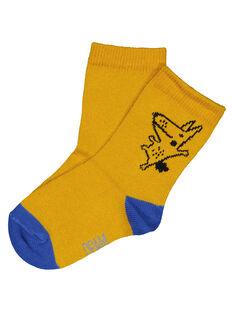 Orange Socks GYUJOCHO1 / 19WI1036SOQ109