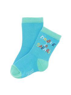 Dark Turquoise Socks CYUJOCHO6A / 18SI10RASOQC217