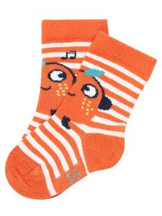 Orange Socks JYUVICHO1 / 20SI10D3SOQE400