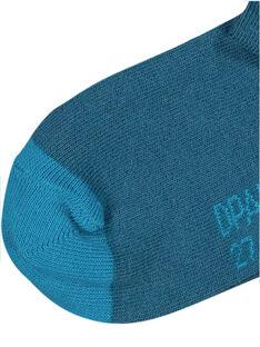 Dark navy Socks GYOJOCHO4 / 19WI02L2SOQ707