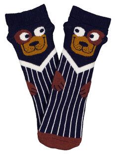 Navy Socks GYUSANCHO2 / 19WI10C1SOQ070
