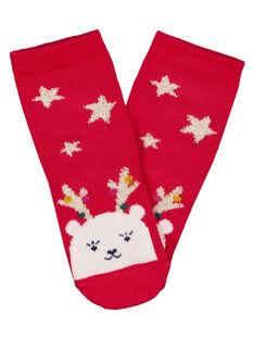 Red Socks GYINOCHO / 19WI09V1SOQF521